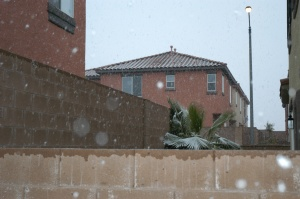 Snowing in Las Vegas, Dec. 17, 2008. Second day in a row!